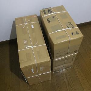日本に送り返されたEMSの内容3点 一時帰国ができないときに日本にEMS配送をお願いしたもの