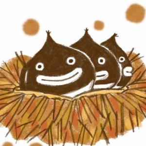 Roasted Chestnuts - 焼き栗はヨーロッパの冬の風物詩です
