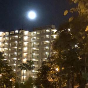 月がとってもキレイだから