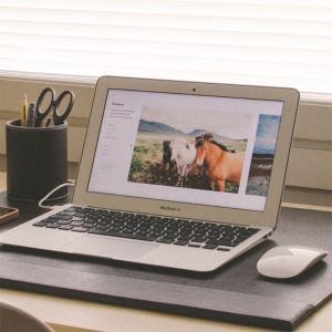 【気ままに旅ブログを初めて2ヶ月が経ちました】閲覧数やアフィリエイトの収益化の秘訣‼‼