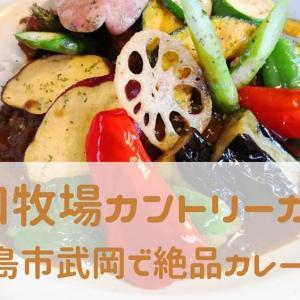 【山口牧場カントリーカレー】鹿児島市武岡で激旨カレーランチ!信じられる食材だけを使ったカレーが絶品。ソーセージもうま!