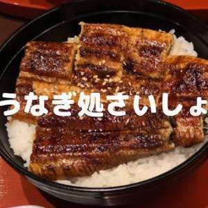 【うなぎ処さいしょ】鹿児島で美味しい鰻を食べたいならここ!お得なランチもある絶品鰻