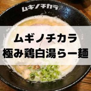 ムギノチカラ【鹿児島市山田】カフェみたいにおしゃれな店内で、がっつり大満足のラーメン