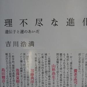 「理不尽な進化 遺伝子と運の間 著吉川博満」を再読する
