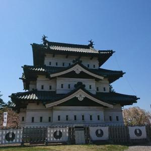 【青森】たか丸もご満悦❗️ 弘前城で花見をしてきました🏯🌸