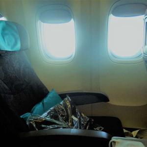 インドネシアに行くならガルーダインドネシア航空がオススメ【エコノミークラスも快適】