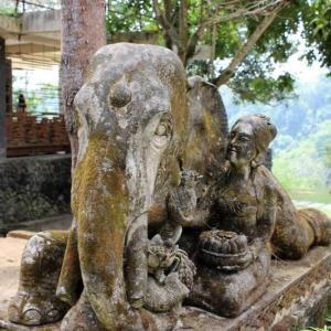 【バリ島観光情報】今年もエレファントキャンプで象乗りしてきました!【自由な象さんとチョコレートが魅力】