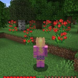 Minecraft 酪農と養蜂