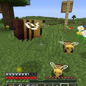 Minecraft 超朗報: 養蜂、軌道に乗る
