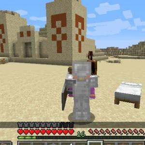 Minecraft 砂漠の遺跡で宝探し