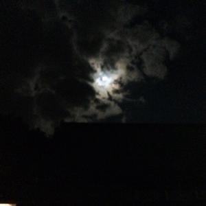 満月の夜の夜神楽祈祷 出雲大社 神在祭