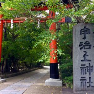 ◆お金入ってくる予兆にも出会った!宇治上神社 & 思いがけず茅の輪で大祓♪ 宇治神社