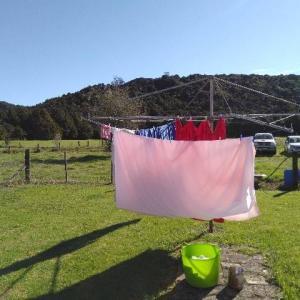 日差しが気持ちいい。ニュージーランドの洗濯事情