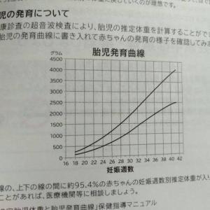 【Growth Scan】妊娠糖尿病だと巨大児になる?