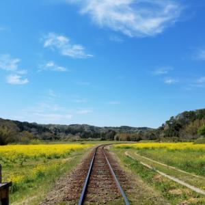 シニアにおける国内貧乏一人旅の魅力とは?ふらっと旅に出てみませんか?