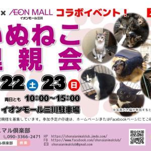 【イオン三川店様とコラボ】いぬねこ里親会 参加犬猫一覧