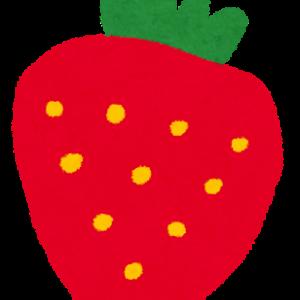 苺を栽培してみよう!