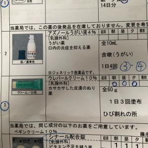 ゼローダ 1クール目