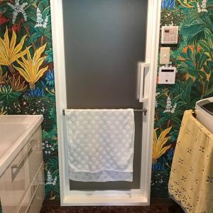 洗面所とトイレはジャングル