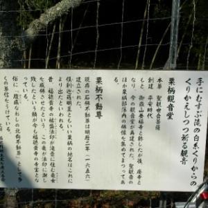 【篠山→黒井】おさらいポタ<8>倶利伽羅不動尊(栗柄)−2