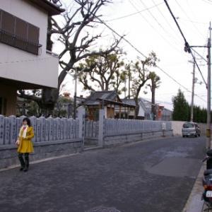 【東大阪徘徊/6】額田戎神社(東山町)~2008年の風景