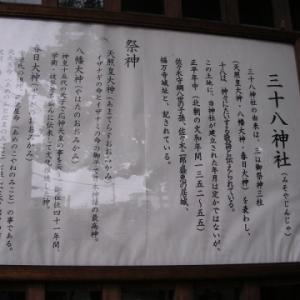 【東大阪徘徊/12】三十八神社(福万寺)~2011年の風景