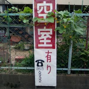 【立寄徘徊/52】大阪遍1:瘡神社(枚方市牧野本町)