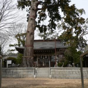 【立寄徘徊】神鉄木津<3>顕宗仁賢神社〜彫モン