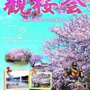 秋田で最初に桜が開花する!勢至公園の開花状況!2019年お花見スケジュールは?