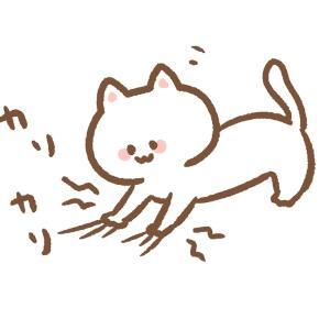 猫の引っ掻き傷に強いソファー☆こんなソファ欲しかった‼