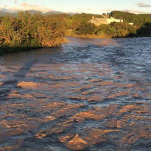 台風19号の影響で大増水の入間川