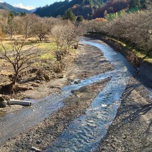 水が引いていくにつれて、惨状が明らかに。満身創痍の名栗川