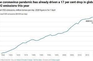 世界のCO2排出量、新型コロナウィルスで17%急落