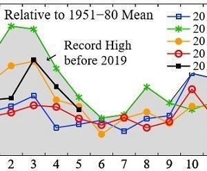 5月の世界平均気温観測史上3位の高さ