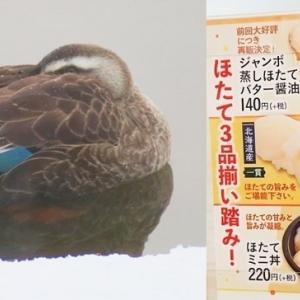 59.3kg 久しぶりの常盤公園→魚べい→腹立て伏せ(*^▽^*)