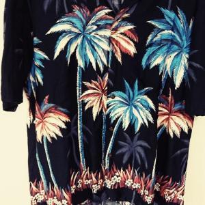 2019年流行の + 夏の定番アロハシャツ