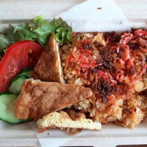 札幌のテイクアウトグルメでインドネシア「パダン料理」が食べられる「Ginger's Garden ジンジャーズガーデン札幌」をブログで紹介!