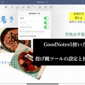 ⑫【GoodNotes5使い方】   投げ縄ツールの使い方と設定