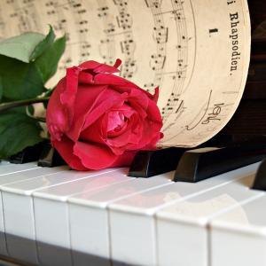 【ピアノ移籍問題】カワイ音楽教室の体験レッスン、ヤマハとの違いに戸惑う