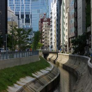 渋谷川を改めて眺める