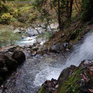 六段の滝と苔むす森  〜  阿寺渓谷遊歩道を歩く#2