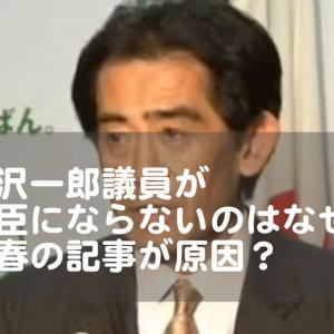【文春】逢沢一郎はなぜ大臣になれない?女性問題?経歴や嫁や娘も調査