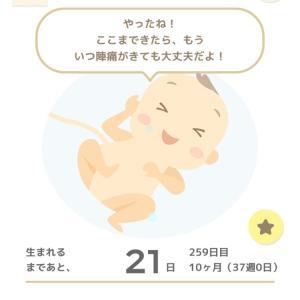 【37w0d】正産期突入&最近の体調とか