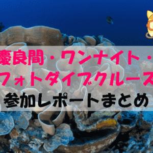 沖縄ダイビング 慶良間・ワンナイト・フォトダイブクルーズの参加レポートまとめ
