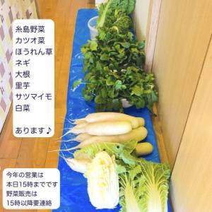 糸島野菜あります♪