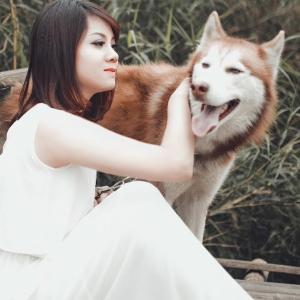 おもしろワンちゃん動画Funny Dog – Smarty Dogs | Funny Dog Video Compilation #29
