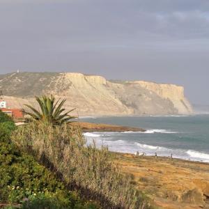 ポルトガルも予想通り、非常事態延長されました。
