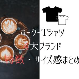 【ボーダーTシャツ徹底比較】定番人気4大ブランドの特徴とサイズ感・着心地を完全レビュー