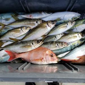 加太船釣り