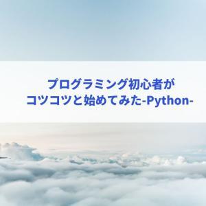 プログラミング初心者がコツコツと始めてみた-Python-